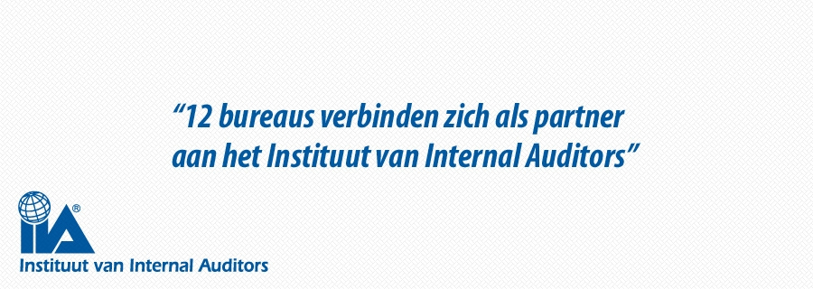 Partners van Instituut van Internal Auditors