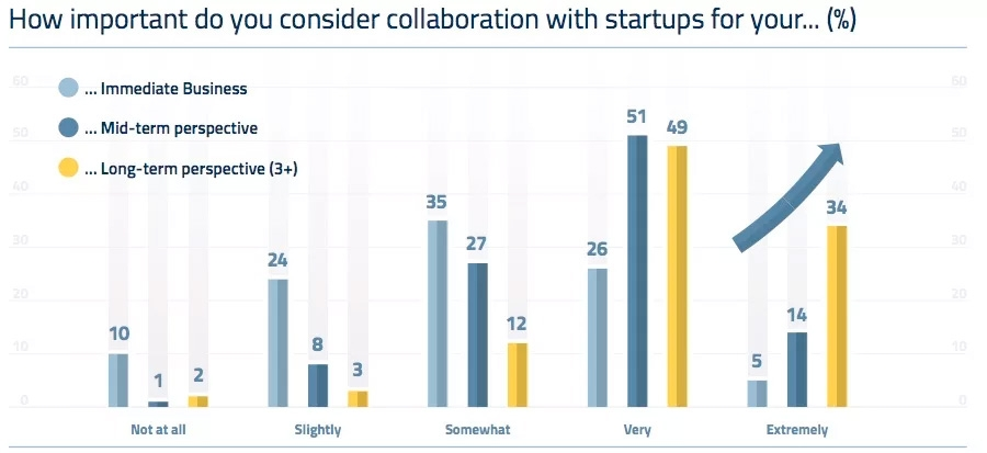 How important do you consider collaboration with startup