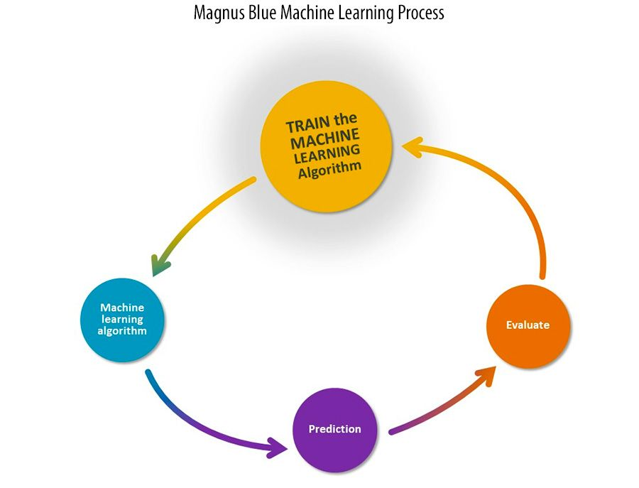 Magnus Blue Machine Learning Process
