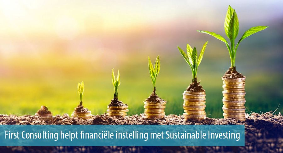 First Consulting helpt financiële instelling met Sustainable Investing