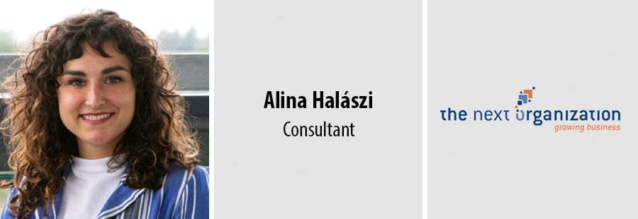 Alina Halaszi, Consultant bij The Next Organization
