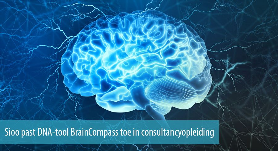 Sioo past DNA-tool BrainCompass toe in consultancyopleiding