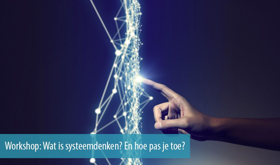 Workshop: Wat is systeemdenken? En hoe pas je toe?