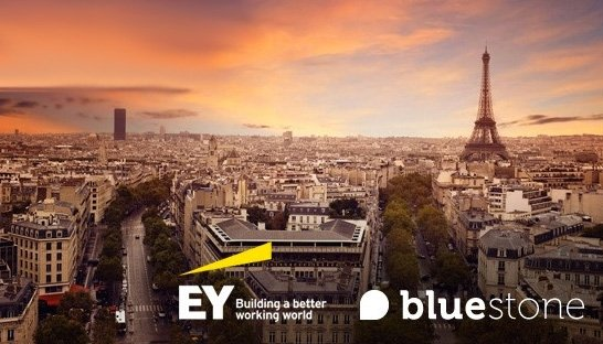 EY Advisory koopt analytics-expert Bluestone Consulting