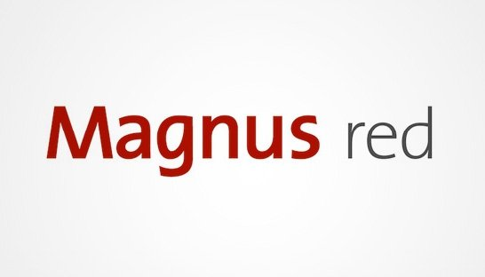 Eurogroup Consulting gaat verder als Magnus Red