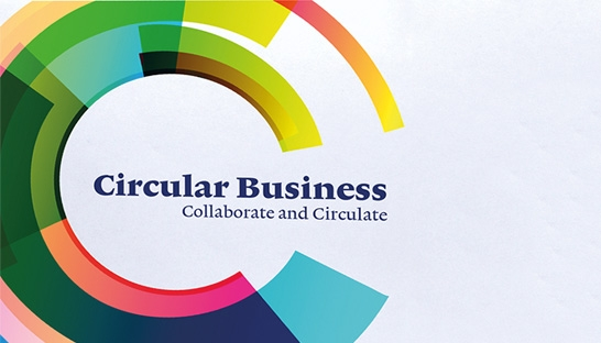 Managementboek: Circular Business: Collaborate and Circulate