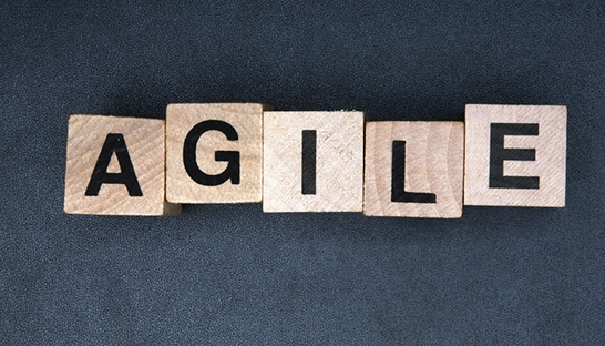 The Agile Coach Company: Zes Agile trends voor 2017