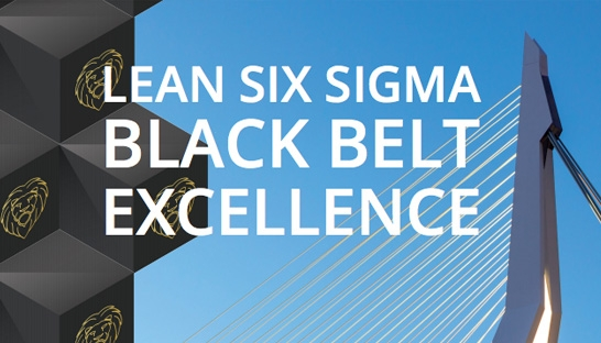 RSM en The Lean Six Sigma Company ontwikkelen Black Belt programma
