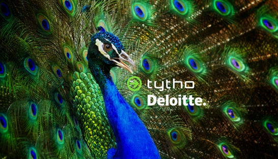 Deloitte Nederland neemt tax automation consultancy Tytho over