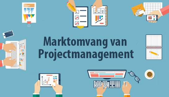 Analyse: Wat is de marktomvang van projectmanagement?