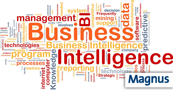 Background concept wordcloud illustration of business intelligence - Magnus