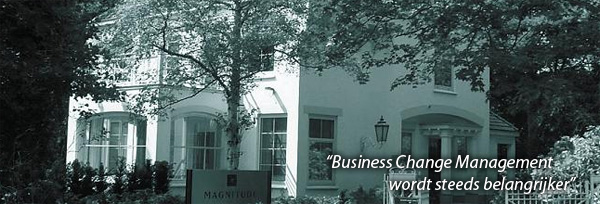 Magnitude Consulting - Business Change Management