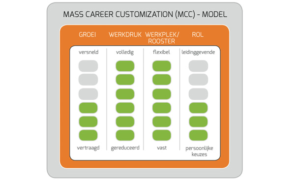 Mass Career Customization Model