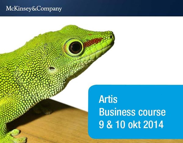 McKinsey - Artis Business Course
