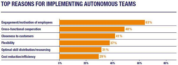 Top Reasons for Implementing Autonomous Teams.jpg