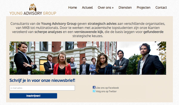 Young Advisory Group - Website
